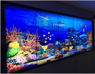 墙面互动,互动池塘,互动小鱼,